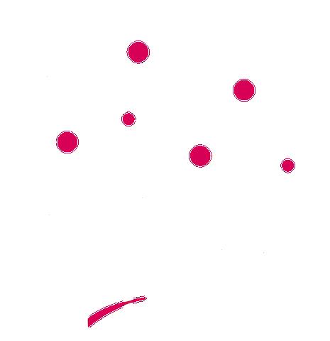 Muffin Haus